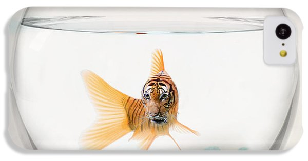 Tiger Fish IPhone 5c Case