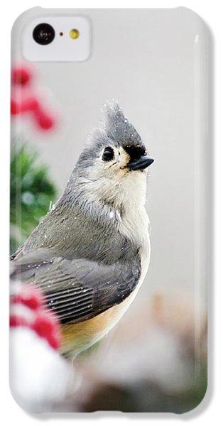 Titmouse Bird Portrait IPhone 5c Case by Christina Rollo