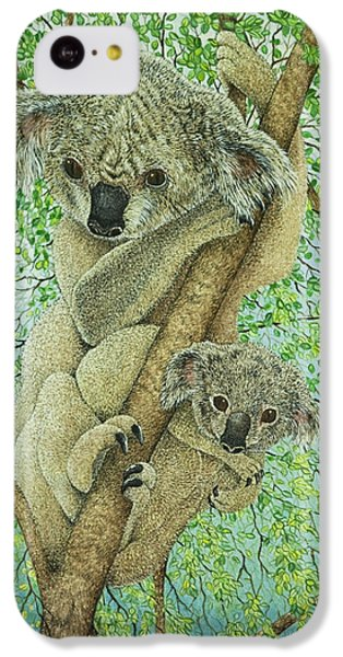 Top Of The Tree IPhone 5c Case by Pat Scott