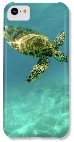 Tortoise IPhone 5c Case by Happy Home Artistry
