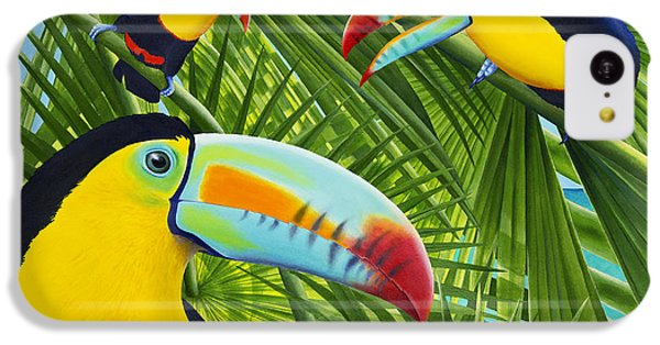 Toucan iPhone 5c Case - Toucan Threesome by Carolyn Steele