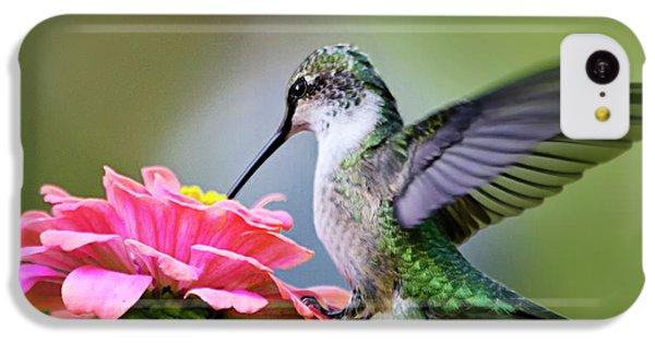 Humming Bird iPhone 5c Case - Tranquil Joy Hummingbird Square by Christina Rollo