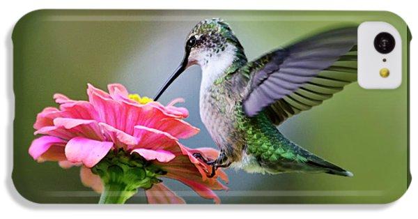 Tranquil Joy Hummingbird Square IPhone 5c Case by Christina Rollo