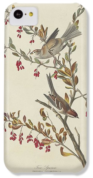 Tree Sparrow IPhone 5c Case by Rob Dreyer