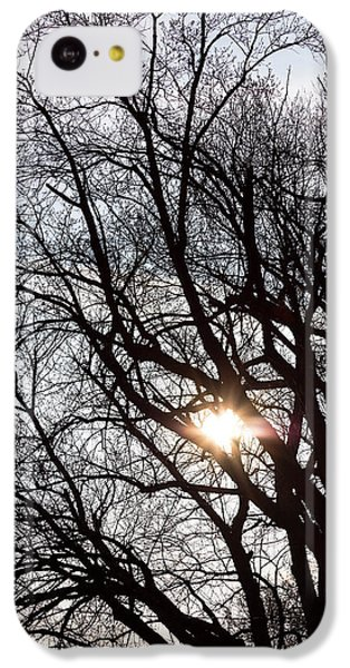 IPhone 5c Case featuring the photograph Tree With A Heart by James BO Insogna