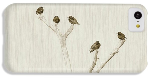 Treetop Starlings IPhone 5c Case by Benanne Stiens