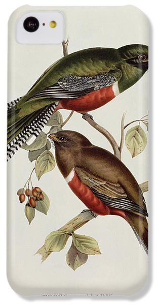 Trogon Collaris IPhone 5c Case