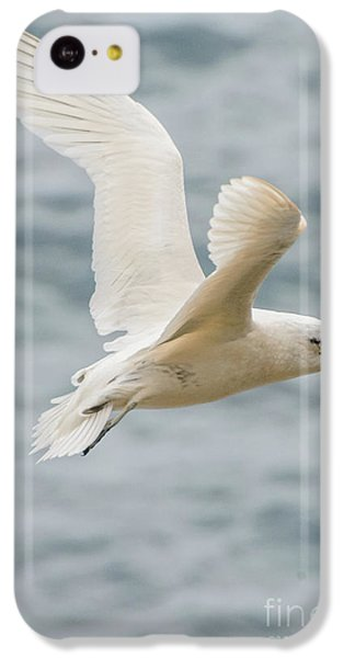Tropic Bird 2 IPhone 5c Case by Werner Padarin