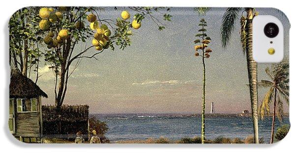 Tropical Scene IPhone 5c Case by Albert Bierstadt