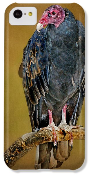 Buzzard iPhone 5c Case - Turkey Vulture by Nikolyn McDonald