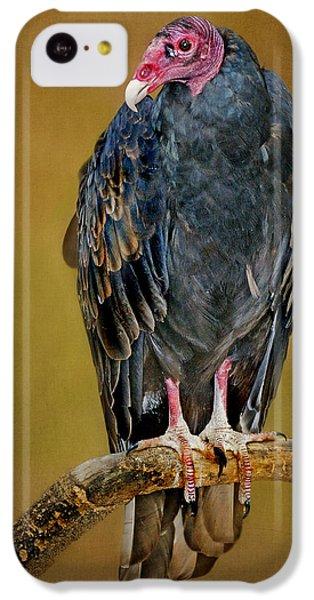 Turkey Vulture IPhone 5c Case by Nikolyn McDonald