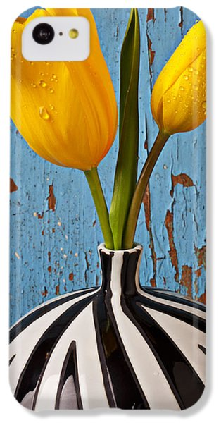 Tulip iPhone 5c Case - Two Yellow Tulips by Garry Gay