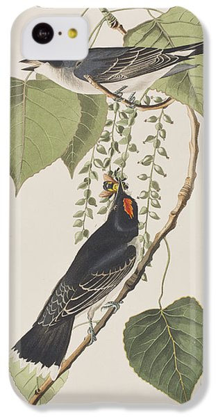 Flycatcher iPhone 5c Case - Tyrant Fly Catcher by John James Audubon