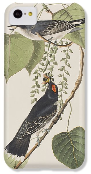 Tyrant Fly Catcher IPhone 5c Case by John James Audubon