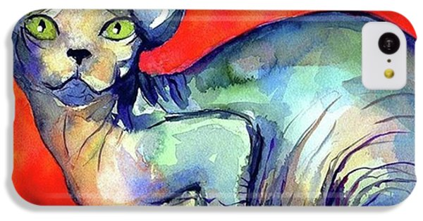 Vibrant Watercolor Sphynx Painting By IPhone 5c Case
