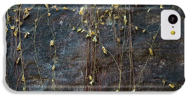 IPhone 5c Case featuring the photograph Vines On Rock, Bhimbetka, 2016 by Hitendra SINKAR