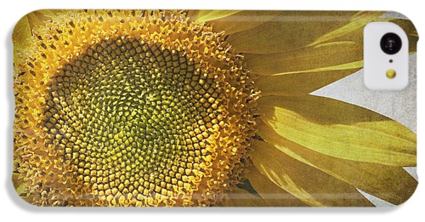 Sunflower iPhone 5c Case - Vintage Sunflower by Jane Rix