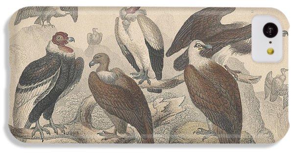 Vultures IPhone 5c Case
