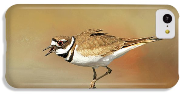 Killdeer iPhone 5c Case - Wading Killdeer by Donna Kennedy