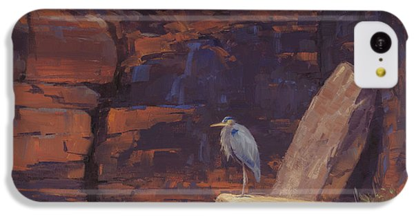 Heron iPhone 5c Case - Waiting by Cody DeLong