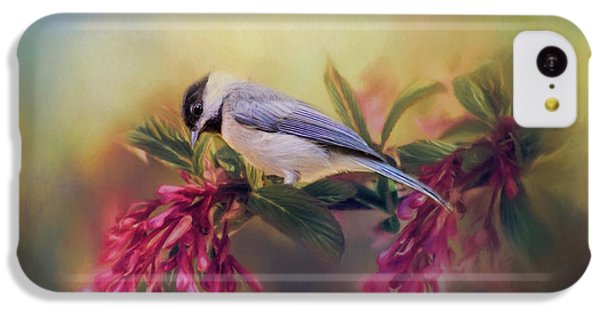 Watching Flowers Bloom Bird Art IPhone 5c Case by Jai Johnson