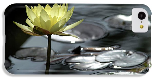 Water Lily And Silver Leaves IPhone 5c Case