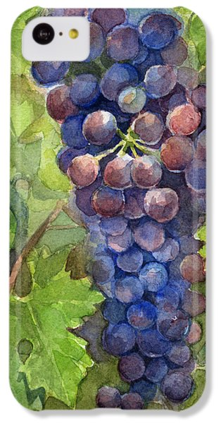 Watercolor Grapes Painting IPhone 5c Case by Olga Shvartsur