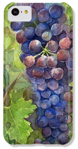 Watercolor Grapes Painting IPhone 5c Case by Olga Shvartsur