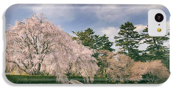 IPhone 5c Case featuring the photograph Weeping Cherry In Bloom by Jessica Jenney