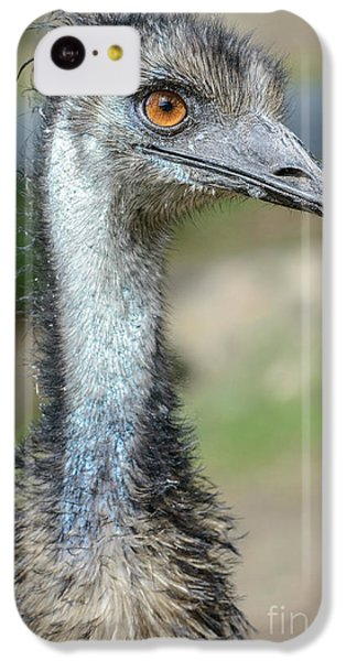 Emu 2 IPhone 5c Case by Werner Padarin