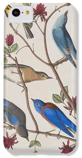 Bluebird iPhone 5c Case - Western Blue-bird by John James Audubon