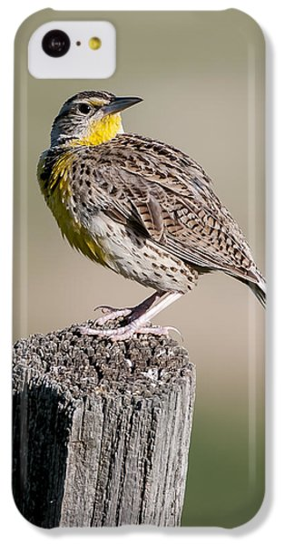 IPhone 5c Case featuring the photograph Western Meadowlark by Gary Lengyel