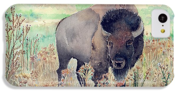 Where The Buffalo Roams IPhone 5c Case by Arline Wagner