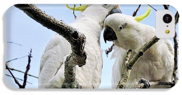 White Cockatoos IPhone 5c Case by Kaye Menner