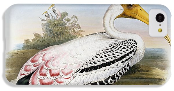 Ibis iPhone 5c Case - White-headed Ibis, Tantalus Leucocephalus by John Gould