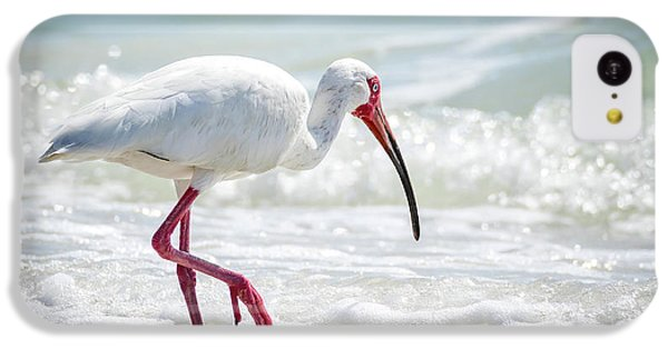 Ibis iPhone 5c Case - White Ibis by Michael Weber
