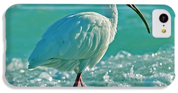Ibis iPhone 5c Case - White Ibis Paradise by Betsy Knapp