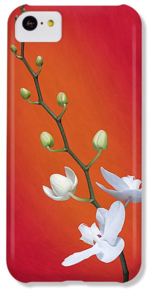 White Orchid Buds On Red IPhone 5c Case by Tom Mc Nemar
