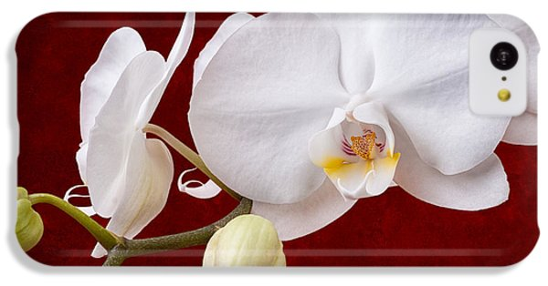 White Orchid Closeup IPhone 5c Case by Tom Mc Nemar