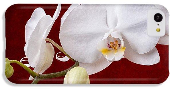 White Orchid Closeup IPhone 5c Case by Tom Mc Nemar