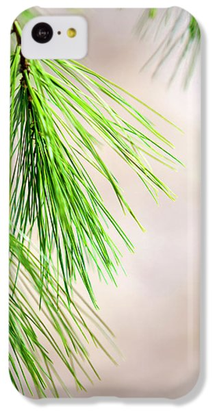 IPhone 5c Case featuring the photograph White Pine Branch by Christina Rollo