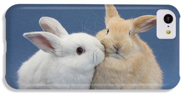 White Rabbit And Sandy Rabbit IPhone 5c Case