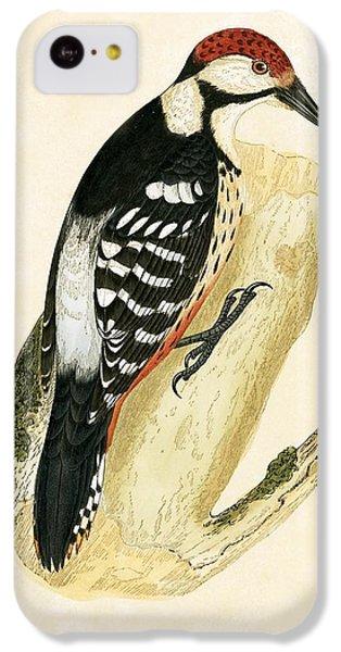 White Rumped Woodpecker IPhone 5c Case