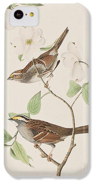 White Throated Sparrow IPhone 5c Case by John James Audubon