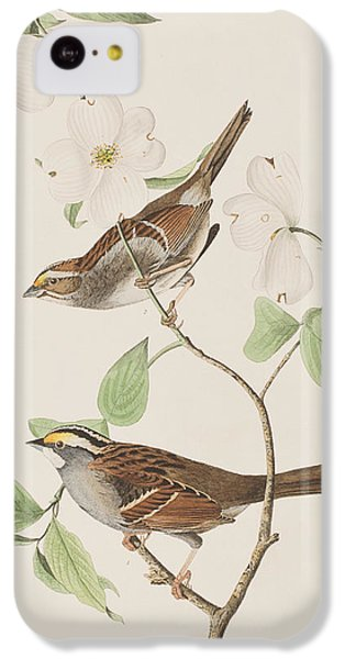 White Throated Sparrow IPhone 5c Case by John James Audubon