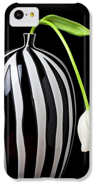 Tulip iPhone 5c Case - White Tulip In Striped Vase by Garry Gay