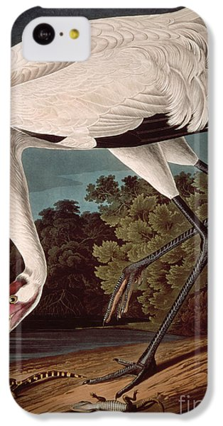 Whooping Crane IPhone 5c Case