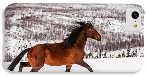 Horse iPhone 5c Case - Wild Horse by Todd Klassy