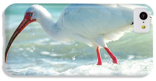 Ibis iPhone 5c Case - Wild Winds by Betsy Knapp