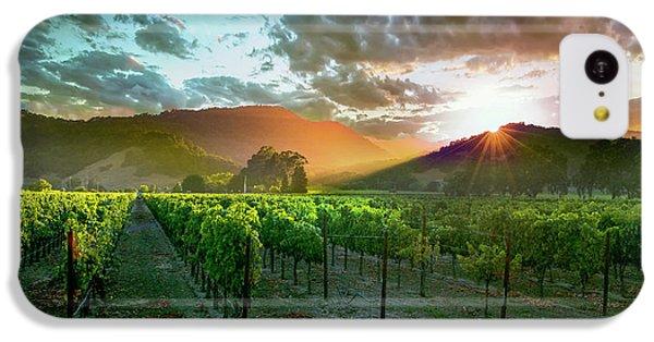 Wine Country IPhone 5c Case